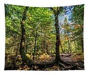 U Shaped Trees Cascade Mountain Ny New York Tapestry