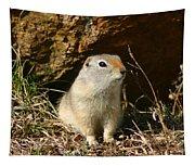 Uinta Ground Squirrel Tapestry