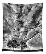 Under Cover In Black And White Tapestry