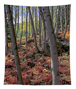 Under The Aspens Tapestry by Perspective Imagery