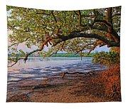 Under The Mangroves Tapestry