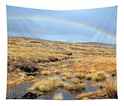 Under The Rainbow Tapestry