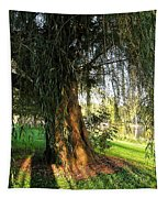 Under The Weeping Willow Tapestry