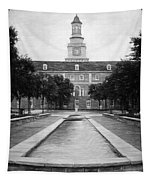University Of North Texas Bw Tapestry