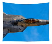 Up Close F-22 Raptor Tapestry