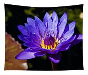 Upbeat Violet Elegance - The Beauty Of Waterlilies  Tapestry