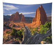 212645-upper Cathedral Valley  Tapestry
