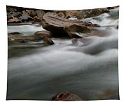 Upturned Rock In A Flowing Stream Tapestry