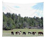 Utah 10 Tapestry