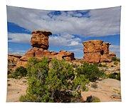 Utah Canyonlands Tapestry