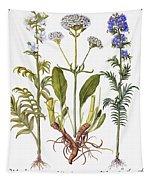 Valerian Flowers, 1613 Tapestry