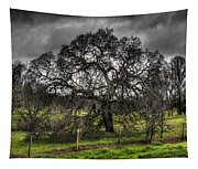 Valley Oak Tapestry