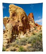 Valley Of Fire - Face In The Rock Tapestry