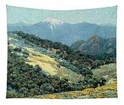 Valley Splendor Tapestry