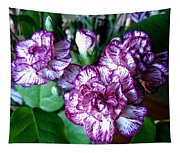 Variegated Carnations Tapestry