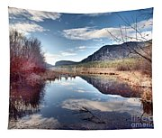 Vaseux Reflections Tapestry