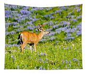 Velvet On Lupine Tapestry