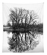 Verge Of Spring Tapestry