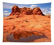 Vermilion Cliffs Reflections Tapestry