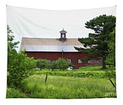 Vermont Barn With Tire Swing Tapestry
