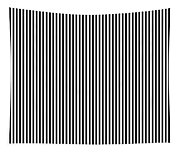 Vertical Stripes In Black And White Tapestry