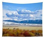 Vibrant Montana Tapestry