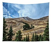 View From Guanella Pass Road Tapestry