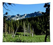 View From Lake Mary Tapestry