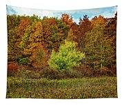 View From The Meadow Tapestry