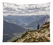 View Tapestry