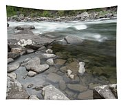View Of The Wenatchee River Tapestry