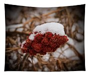 Vignettes - First Snow 1 Tapestry