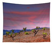 Vineyards At Sunset In Spain Tapestry