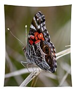 Virginia Lady Butterfly Side View Tapestry