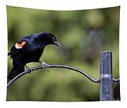 Waiting For Suet Tapestry