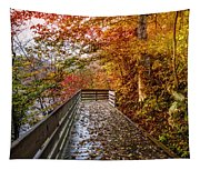 Walk Into Autumn Tapestry