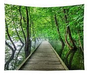 Walk Into The Mist Tapestry
