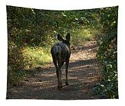 Walk On Tapestry