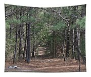 Walking In The Pine Forest Tapestry
