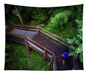 Walkway Tahquamenon Lower Falls Upper Peninsula Michigan Tapestry