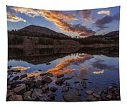 Wall Reflection Tapestry