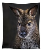 Wallaby Portrait Tapestry