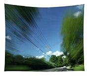 Warp Speed Tapestry