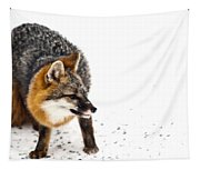 Wary Red Fox Tapestry