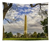Washington Monument From The Mall Tapestry