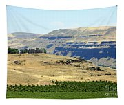 Washington Stonehenge With Vineyard Tapestry