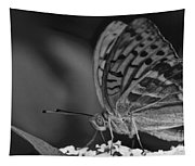 Watchful Butterfly Tapestry