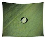 Water Droplet On Green Leaf Tapestry