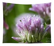 Water Droplets On Chives Flowers Tapestry
