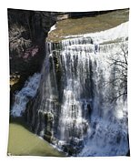 Water Fall In Tennessee  Tapestry